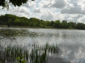 Blick Falkenhagener See mit Wolken